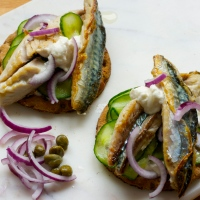 Mackerel with salted cucumber, horseradish, onion & capers